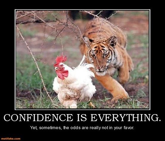 Tigers, Memes: Some Lions, Big Cheetahs Funny  Cat
