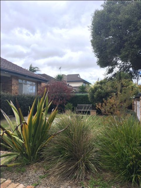 Existing front garden