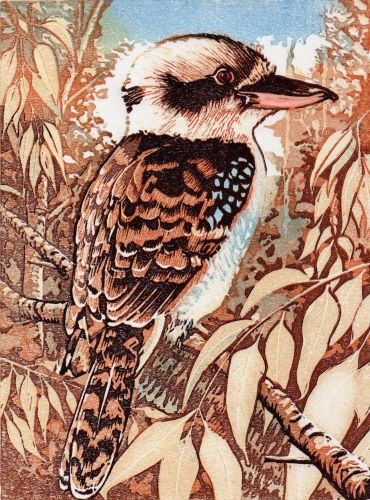 "'Kookaburra' Linocut by Mike Smith. ""I am a printmaker focussing my work mostly through the medium of lino block printing...Never without sketch book or camera, my print work is always developed from my own drawn or photographic observations."""