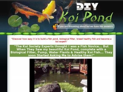 35 best images about koi pond on pinterest small yards for Koi pond builders greenville sc