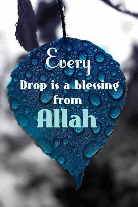 .Every drop is a blessing from ALLAH