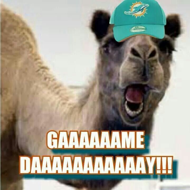 Mike, Mike - It's... Game Day!