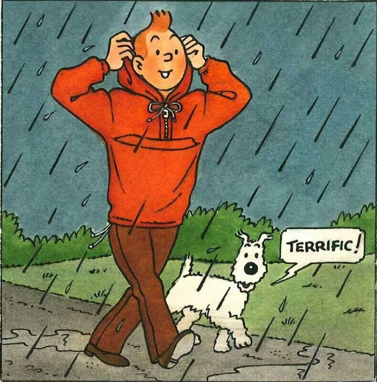 Tintin & Milou in the rain... From an advertisement for Salik Kangourak in English.