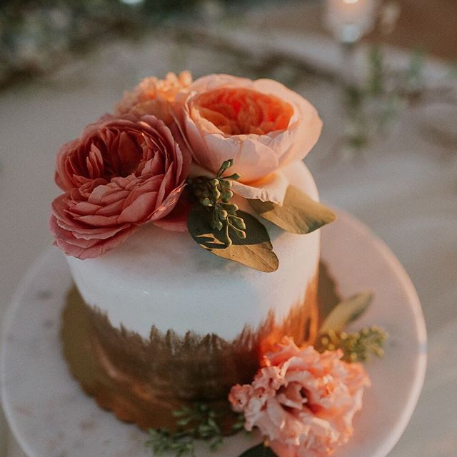 Head over to @wrightphotographs blog today to check out this fun fall wedding. I just love these garden roses on the cake! The day was filled with crazy weather but this couple absolutely rocked it!
