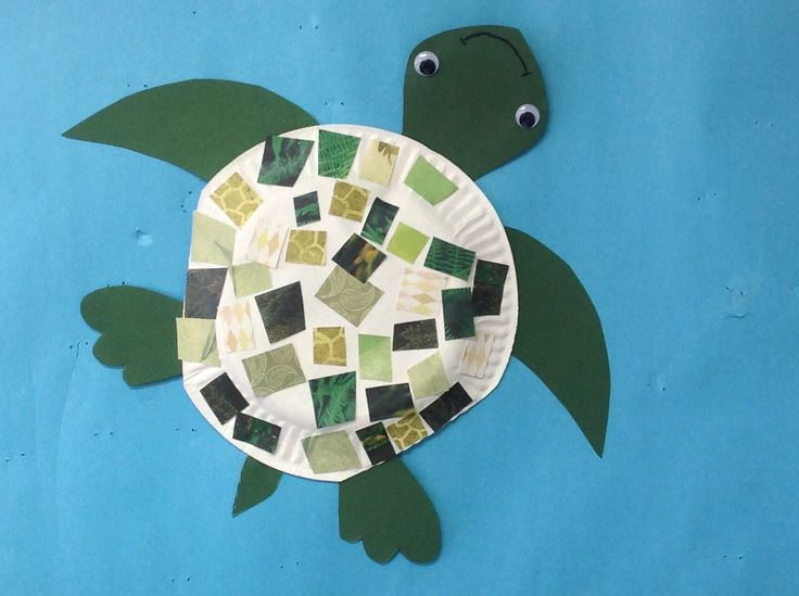 Paper plate sea turtle with leftover scraps. Great way to use up paper you thought you would never use. K-2nd summer camp
