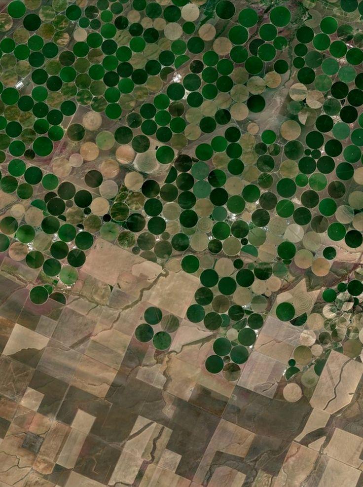 Pivot-irrigation fields - Plymouth, Washington, USA - Google Earth