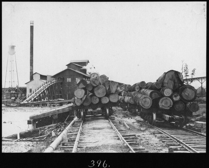 Sawn Timbers Supply In Washington State ~ Best images about logging it s in the blood on