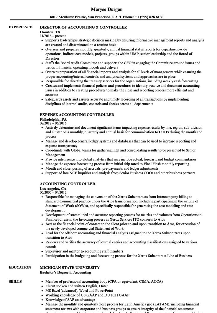 senior it auditor resume sample