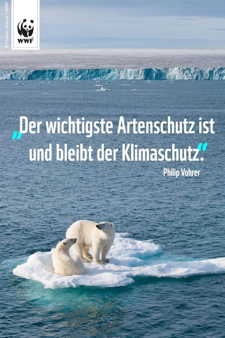Zitat zum Sonntag.  Setzt ein Zeichen für mehr Klimaschutz: www.wwf.de/earthhour #EarthHour