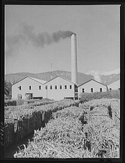 • Vintage photography of Puerto Rico • Ensenada, Puerto Rico. Carloads of sugar cane at the South Puerto Rico Sugar Company • Creator(s): Delano, Jack, photographer • Date Created/Published: 1942 Jan. • Ensenada, Puerto Rico. Workmen at the South...