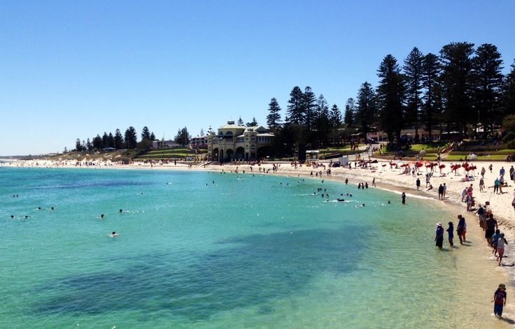 Glorious summer morning at Cottesloe beach today.