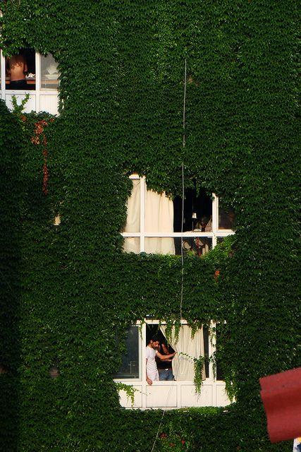 Turkey Istanbul, Ivy House