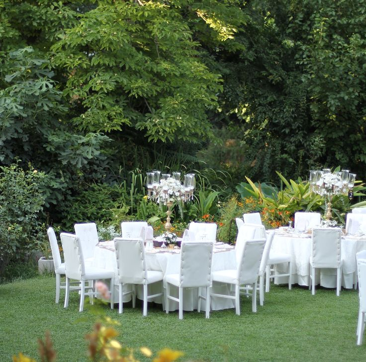78 Images About Wedding At Edward Whittall Garden On