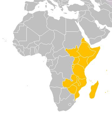 East Africa or Eastern Africa is the easterly region of the African continent, variably defined by geography or geopolitics. In the UN scheme of geographic regions, 20 territories constitute Eastern Africa: Tanzania, Kenya, Uganda, Rwanda and Burundi – comprise the African Great Lakes region and are members of the East African Community (EAC). Burundi and Rwanda are sometimes considered part of Central Africa. Djibouti, Eritrea, Ethiopia and Somalia – collectively known as the Horn of…