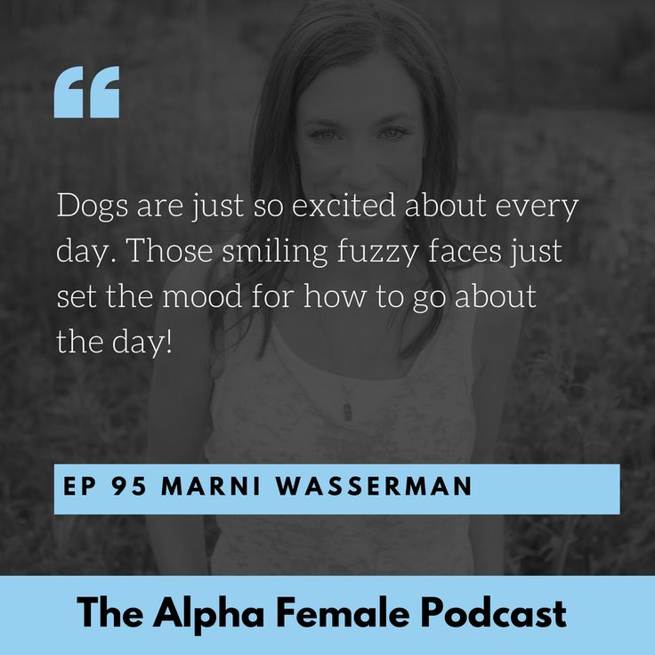 Download and listen to the Alpha Female Podcast on iTunes or Stitcher Radio #alphafemale #alpha #alphafemalepodcast #podcast (scheduled via http://www.tailwindapp.com?utm_source=pinterest&utm_medium=twpin)