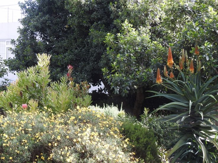 Fynbos Gardens Hermanus: House Braak. June 2015.