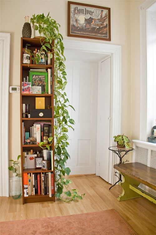 love the tall bookcase, the trailing philodendron, and the recycled glass bottle on the floor, oh and that killer bench and side table...to say nothing of the BON IVER poster.
