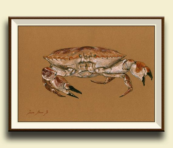 Jonah Crab . Sea animal crab Print of watercolor painting. Ocean animal decor. Nautical art wall. Frame and mat not included, just the print.