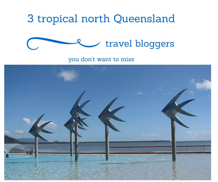 3 tropical north Queensland local's that share their know how on their blogs.