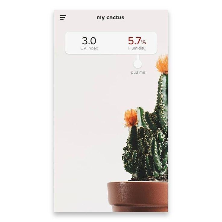 from @_tehhutan -  Day 2 : Aplikasi Perawatan  Kaktus (Cactus Caring App)  .  .  .  #ui#uidesign#dailyui#dribbble #uxdesign#mobiledesign#designporn #designdaily#instadesign#interactiondesign#interface#designthinking #appdesigner#interactiondesign#uxdesigner#userinterface#userexperience #uiuxsupply#designchallenge#uxui#creati