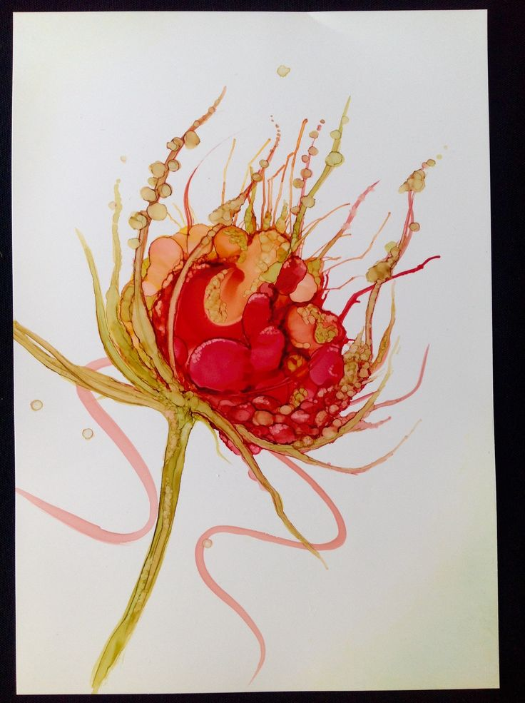 Red berry, alcohol ink on yupo.jayne vanner.