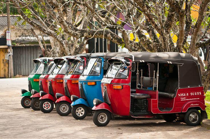 Шри-Ланка: загадочный и удивительный остров — Soulblog.ru — жизненный блог