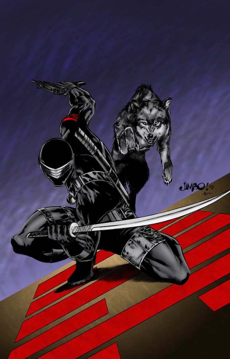 Snake Eyes and Timber, Lines by Jimbo Salgado & Color by Paul D