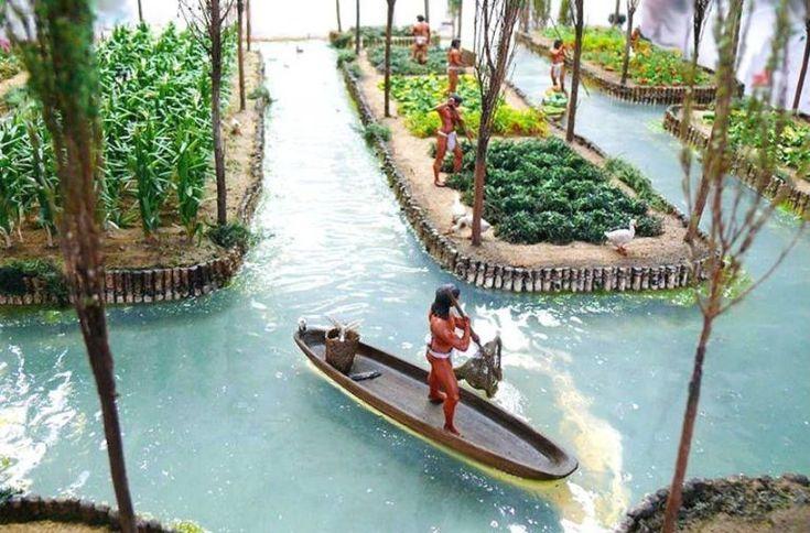 Chinampas Eco Tecnologia Azteca De Vanguardia En 2020 Agricultura Vertical Hidroponia Acuaponia