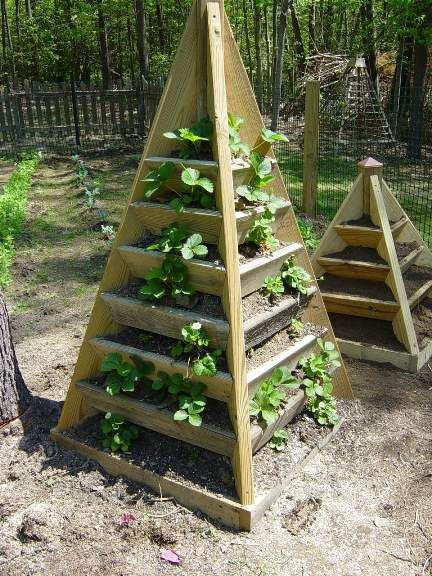 Planting herbs, strawberries or other things.  Pattern on site.Gardens Ideas, Spaces Saving, Buildings, Plants Herbs, Gardens Spaces, Herbs Gardens, Strawberries Planters, Strawberries Towers, Strawberries Pyramid