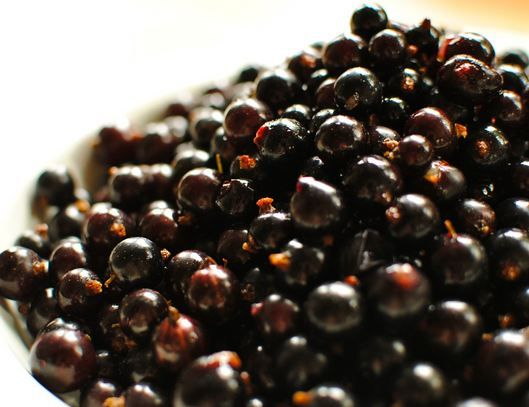 Buy #blackcurrants power to improve your sports performance.