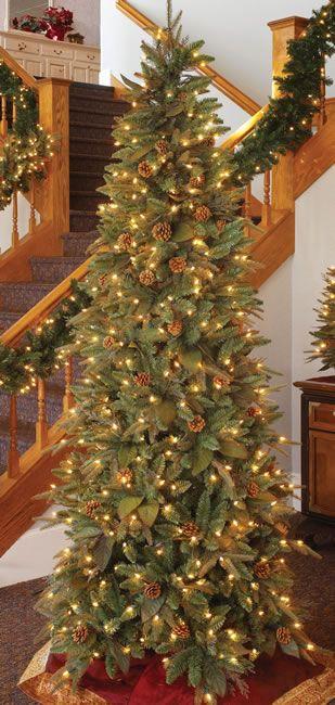 7.5 Foot, Prelit Artificial Christmas Tree, Green River Spruce, Slim.  Height - 7.5 Foot / Width - 41 Inch / Lights - 500 Clear … - 7.5 Foot, Prelit Artificial Christmas Tree, Green River Spruce, Slim
