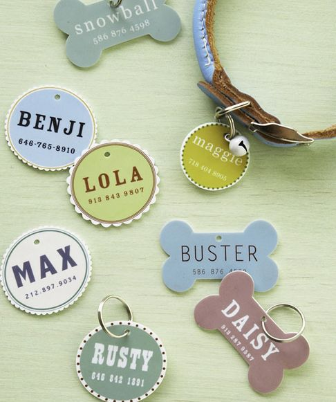 DIY Pet ID Tags  Made with Shrinky Dinks which you can get at most craft stores - SUPER EASY!