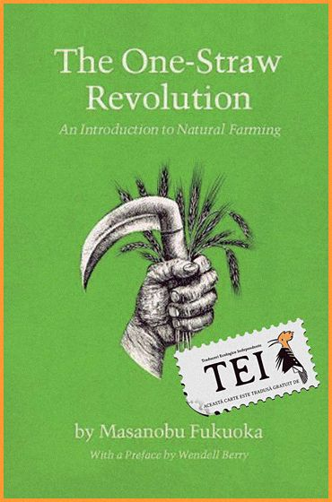 Masanobu Fukuoka – Revoluție într-un spic