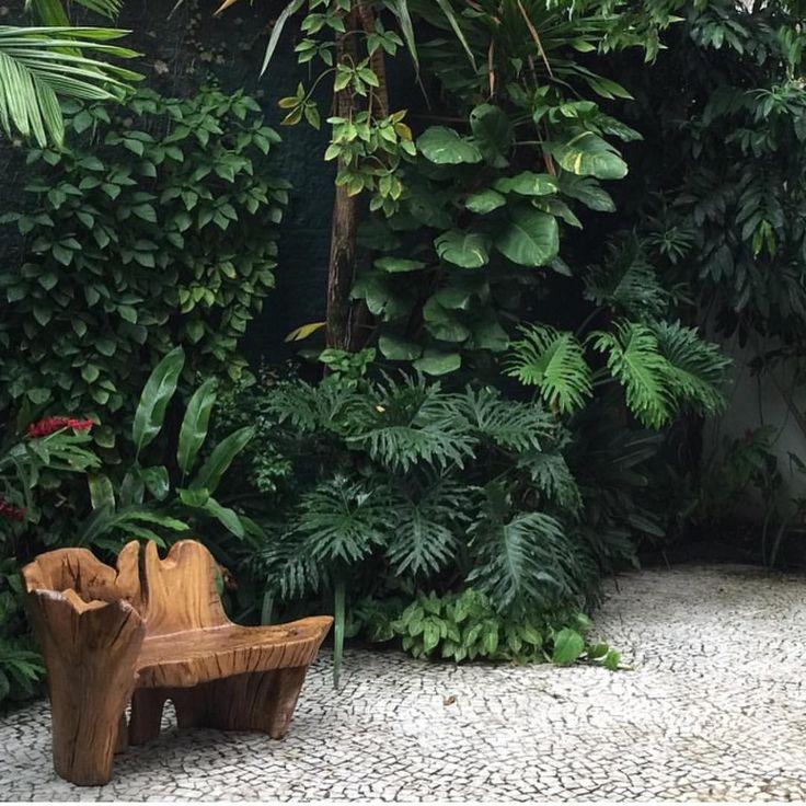 Jardim Tropical ! Banco Ugo França .... ❤️