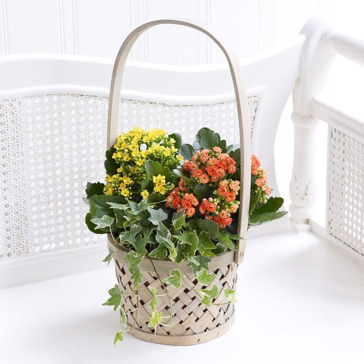 Basket arrangement of orange and yellow flowers.