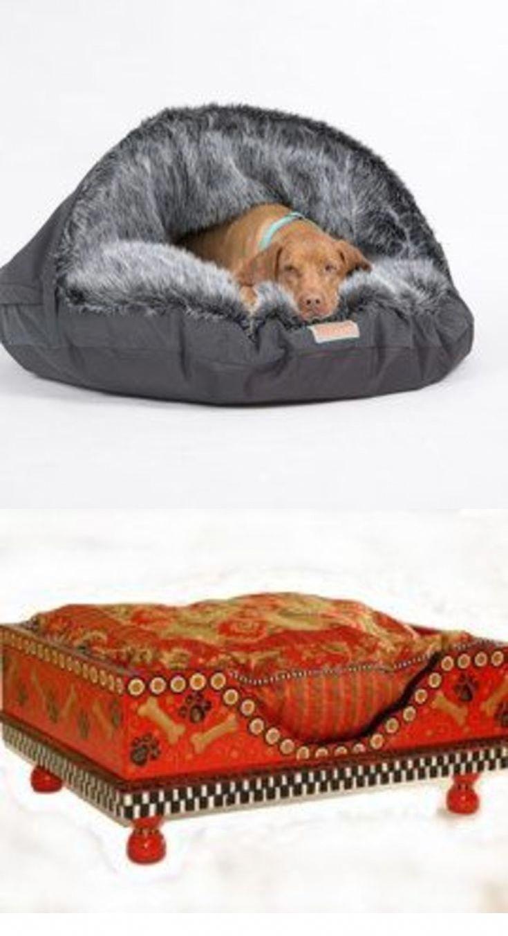 Ultimate Dog Bed Dog Moga Elevated Dog Bed Top Dog Beds Cool Dog Beds