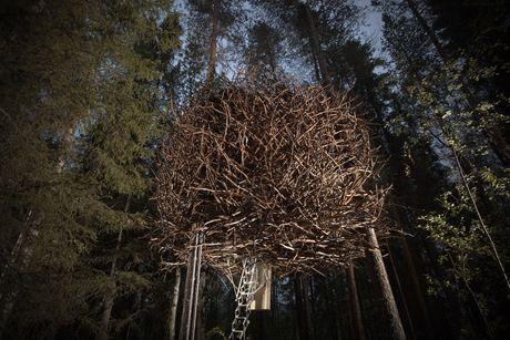 Overnachten in Het Vogelnest van het Treehotel in Zweden. Verdwijnen in een takkenbrei.