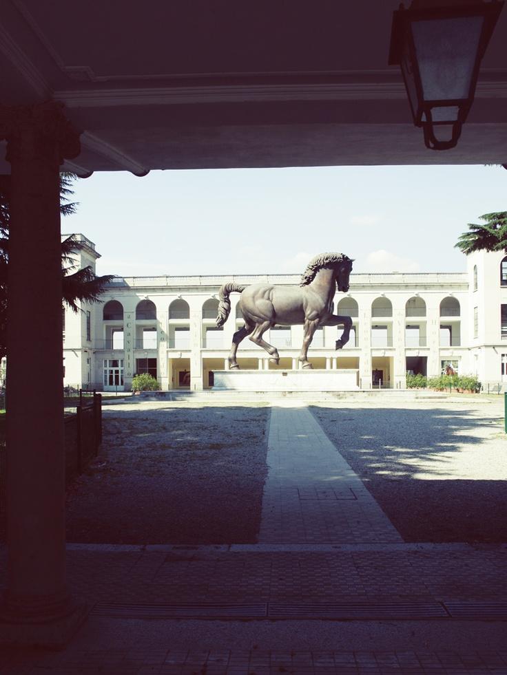 Leonardos Horse