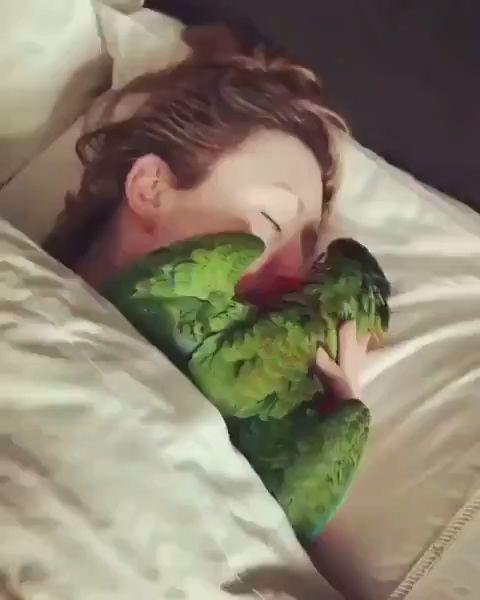 Auch ein Papagei braucht liebe !!!!😘😘