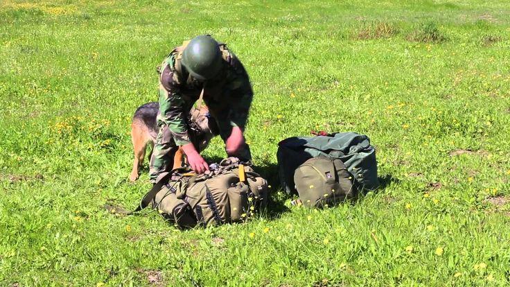 Exército Português -  Documentário - LUNA2014  Realização: Liliana Gonça...