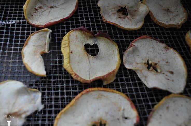 drying appels above the radiotor // Op vakantie droogde ik appels boven de kachel, ze waren heerlijk. In een van de appels vond ik een hartje ♥ http://www.plan-t.eu/kachelappels/