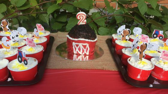 mini ice cream cakes with a barn cake