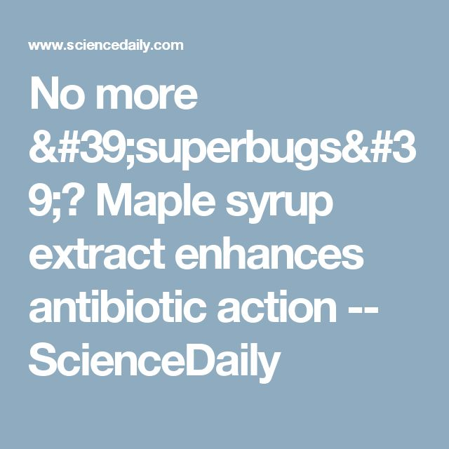 No more 'superbugs'? Maple syrup extract enhances antibiotic action -- ScienceDaily