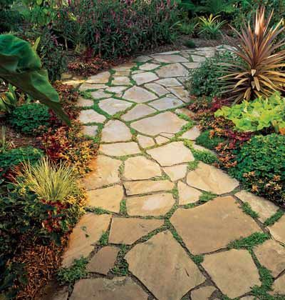 Flagstone path. Its wide and gentle curves form generous planting pockets filled with Mazus reptans, a flowering ground cover.