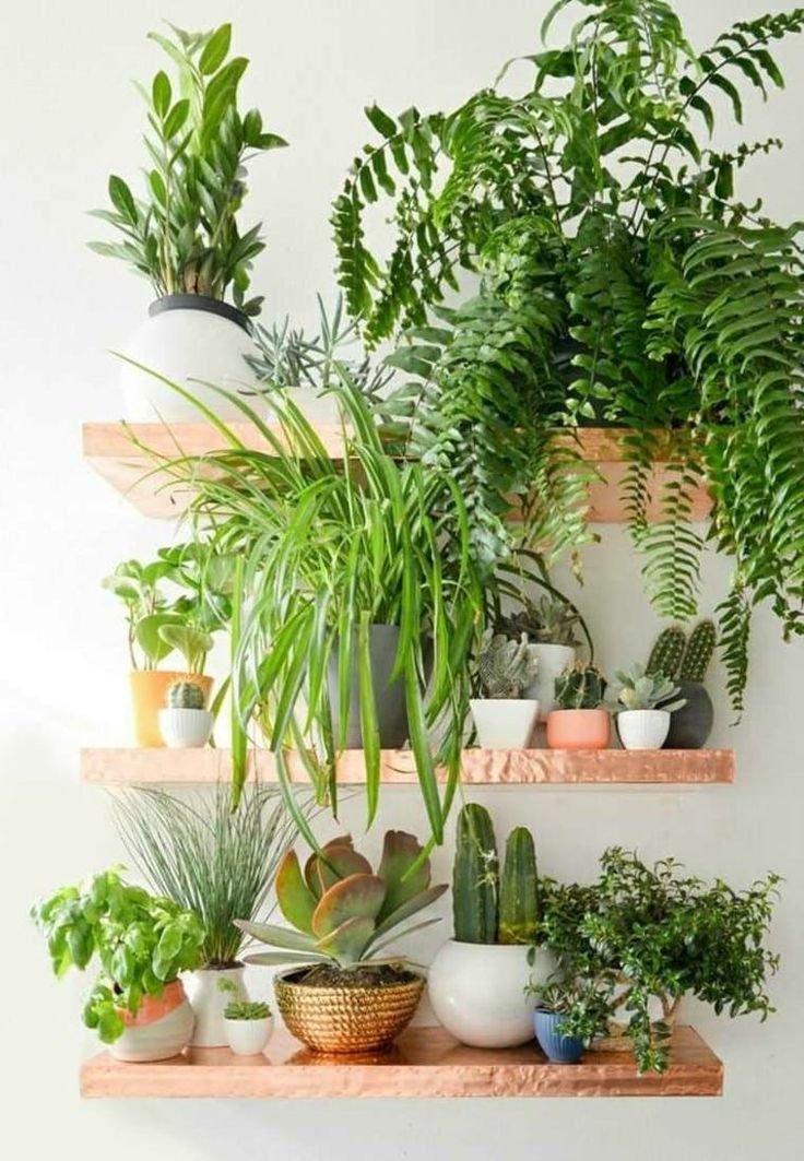 If you're dealing with small spaces, or just trying to add some green into your home decor, take inspiration from these small space, indoor gardens. From air plants and herbs, to succulents and ferns, there are tons of ways to add life to your home.