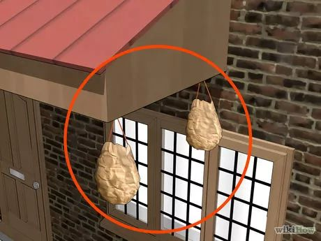 Image intitulée Keep Yellow Jacket Wasps Away Step 5