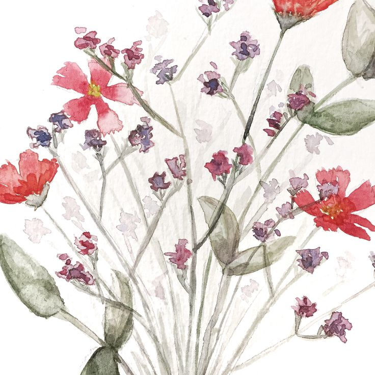 watercolor, watercolour, art, drawing, flowers