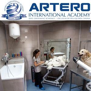 ARTERO INTERNATIONAL ACADEMY EN MÁLAGA. ¡¡Haz de tu hobby tu profesión!! En Artero International Academy realizamos cursos de peluquería canina con todas las clases 100% prácticas y con perro real, para que cuando finalices nuestro curso ya seas un profesional de la peluquería canina.   Infórmate ya al 93 515 00 35. Disponemos de varios centros repartidos por España, con horarios flexibles. Y si ya eres profesional, también tenemos cursos para ti. ¡¡Infórmate ya!!