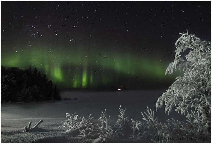 Lappland Nature: Norrsken vi midnatt