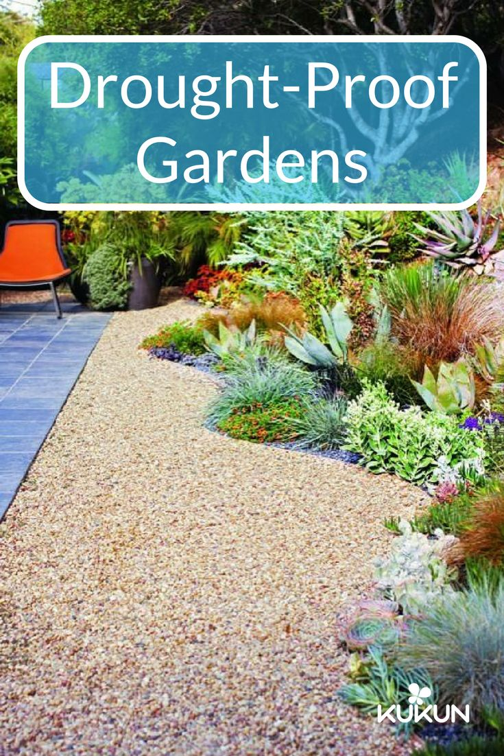 three beautiful drought proof landscaping ideas out 54 Without Planning In A Beautiful Gardening id=32777